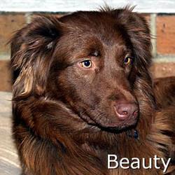 Beauty_TN.jpg