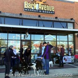 Meet and Greet at Bark Avenue 3-19-2016.jpg