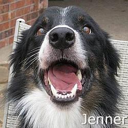 Jenner_TN.jpg