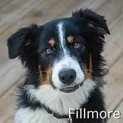 Fillmore_TN.jpg