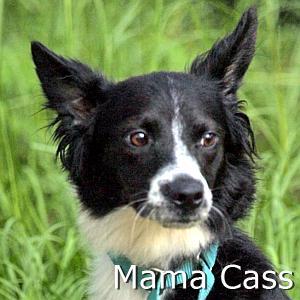 Mama Cass_TN.jpg