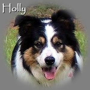 Holly-TN-RIP.jpg