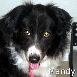 Mandy2_TN_New.jpg