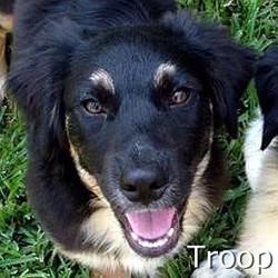 Troop_TN.jpg