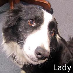 Lady2_TN.jpg