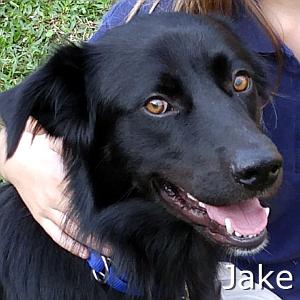 Jake2-TN.jpg