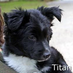 Titan_TN.jpg
