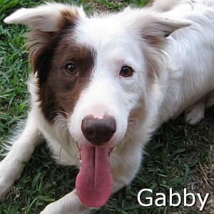 Gabby_TN.jpg