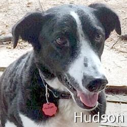 Hudson_TN.jpg