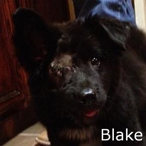 Blake3_TN.jpg
