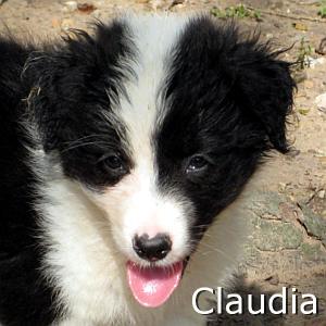 Claudia_TN.jpg