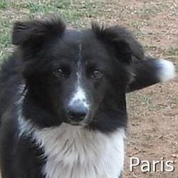 Paris_TN.jpg