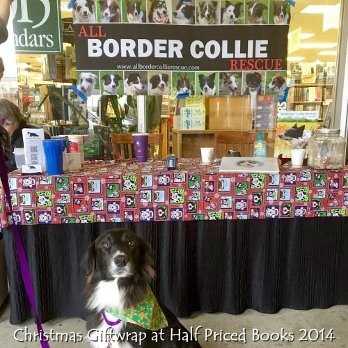 Christmas 2014 Giftwrap at Half Priced Books.jpg