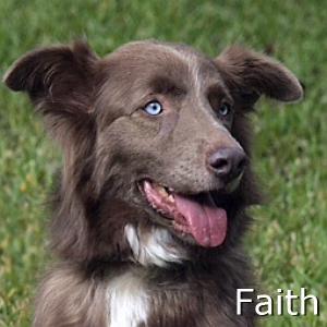 Faith_TN.jpg