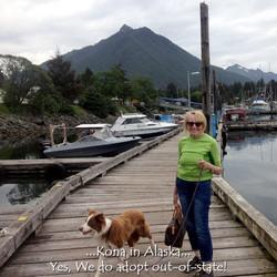Kona in Alaska 6-10-2015.jpg