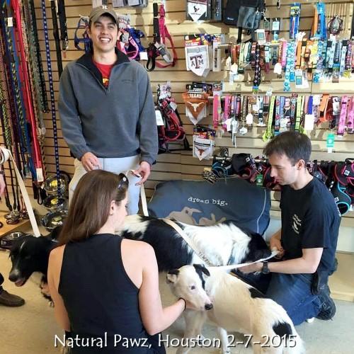 Natural Pawz, Houston 2-7-2015 1.jpg