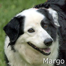 MArgo_TN.jpg