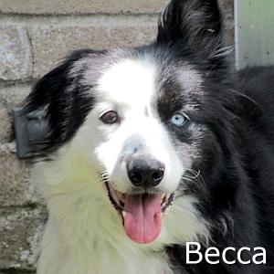 Becca_TN.jpg