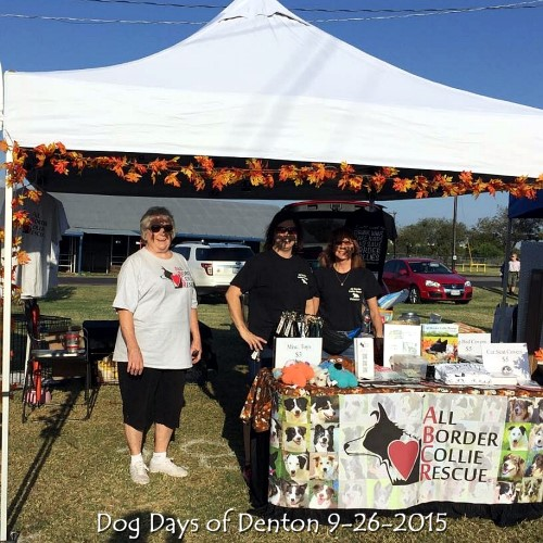 Dog Days of Denton 9-26-2015.jpg