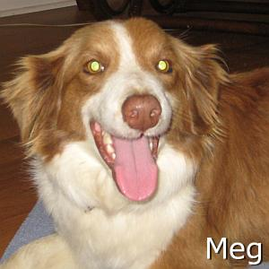 Meg_TN.jpg