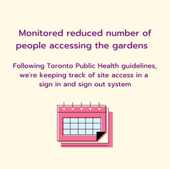 Additional steps to take from Toronto Public Health with Community Gardens regarding accessing gardens with a decorative calendar element below