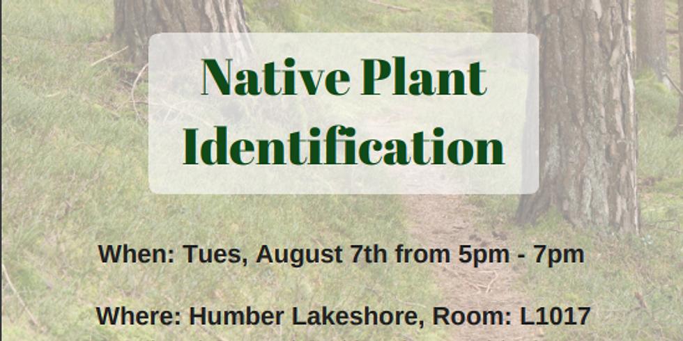 Native Plant Identification