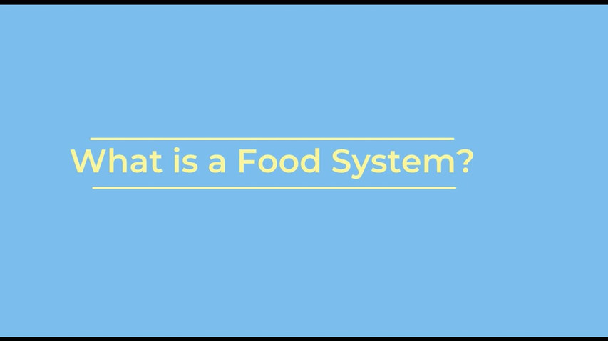 What is a Food System?