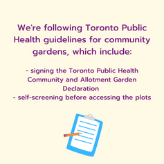 List of steps to take from Toronto Public Health with Community Gardens with a decorative checklist element below