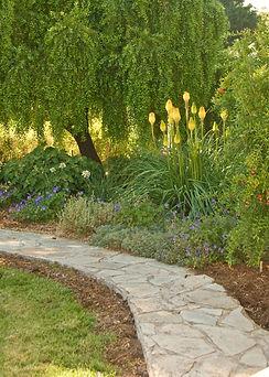 Shirley garden.jpg