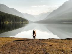July 23, 2018 | Glacier National Park