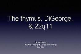 thymus.JPG