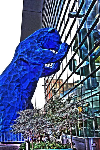 Blue Bear I Denver Co
