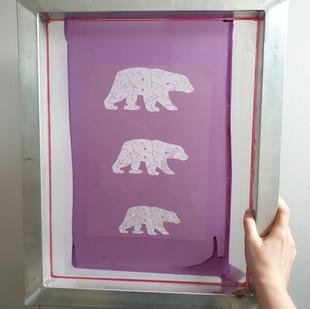 Bear Screen