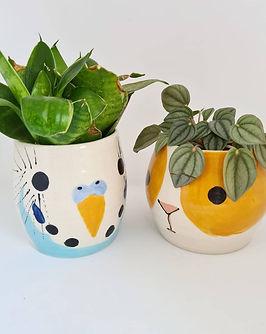 charlotte miller ceramics.jpg