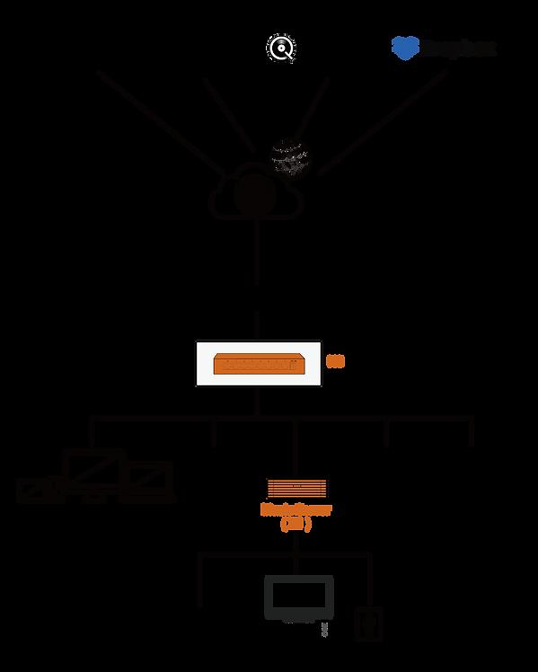 生态拓扑_画板 1.png