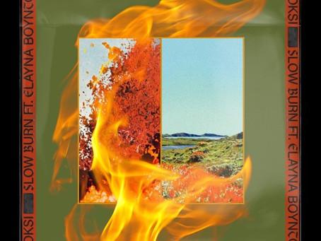 "Tuesday Tune: Moksi's ""Slow Burn"" off first album: Return of House Music"