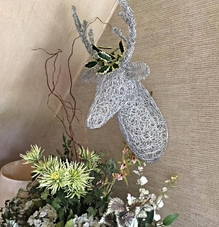 Wall Hung Deer Head