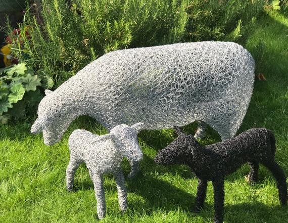 Wirework Sheep and Lambs