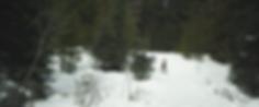 Woodsriders-SadieSnowshoeing_Matlow