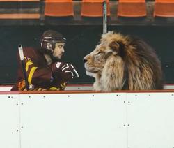Lion (Commercial)