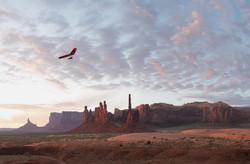 579_erik-almas-photographer-personal_gliders_day-3__v6h9477_wip_2