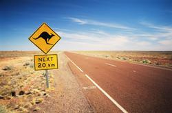 Kangaroo-warning-road-sign