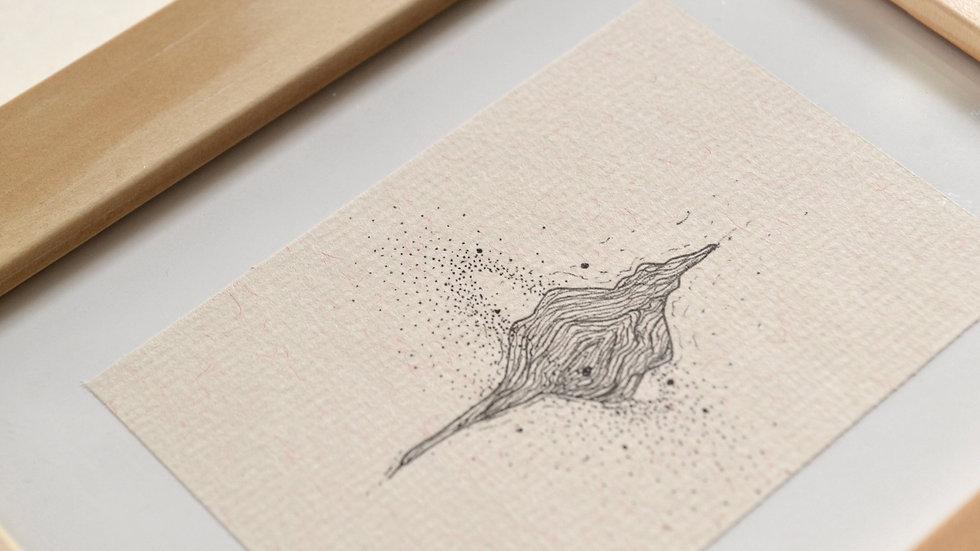 Concha dos pequenos mundos - Mariana Kamimura