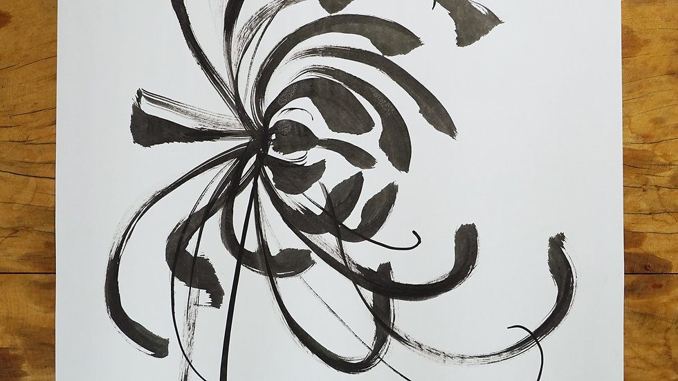 Crisantemo II