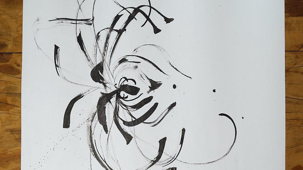 Crisantemo III