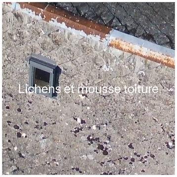 Lichens et mousse toiture