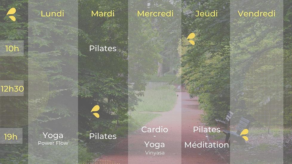 planning_activites_sport_bien_etre_en_exterieur_au_parc_de_la_tete_dor_a_lyon_yoga_pilates