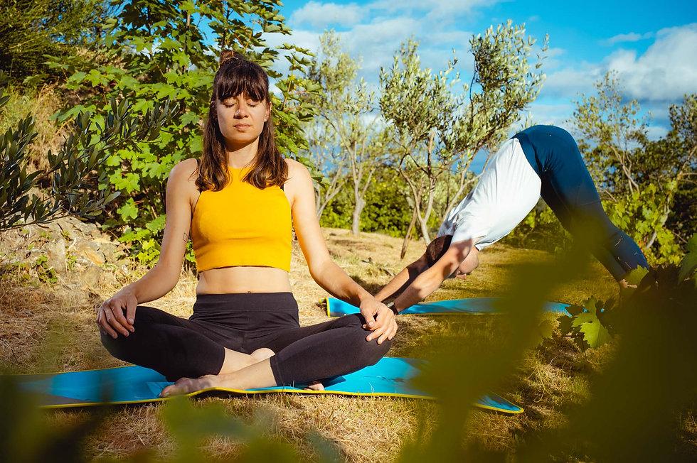 cours_de_yoga_a_lyon_hatha_vinyasa_nidra_meditation_gym_exterieur_dehors_parc_de_la_tete_dor_lyon_gym_sport_www.kinitro.fr_