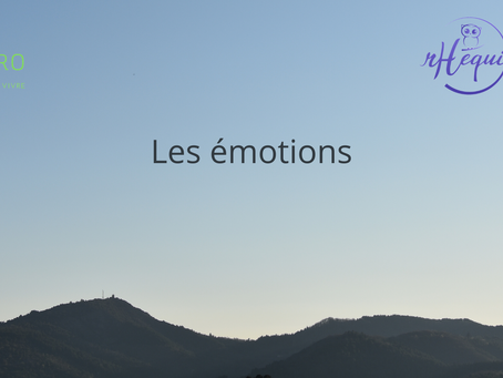 Méditation 4 🧚♀️ Les émotions