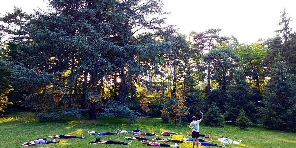 Pilatestivales - Parc de la Tête d'Or